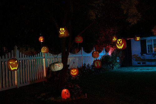 Carved Pumpkins Hanging on Tree
