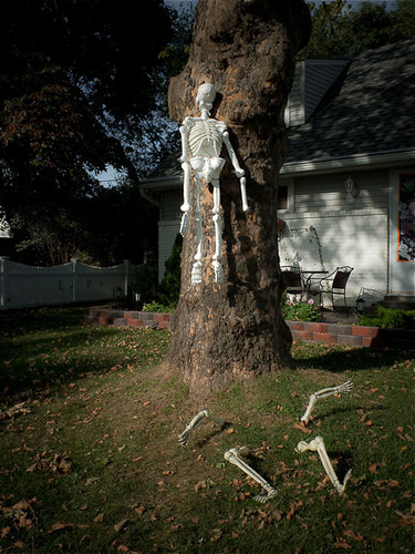 Skeleton Decoration for Trees at Halloween